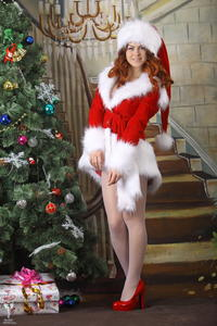 http://img31.imagevenue.com/loc530/th_531052122_silver_angels_Sandrinya_I_Christmas_1_014_123_530lo.jpg